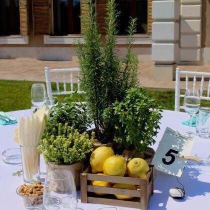 Сватба в шато Мидалидаре 200 гости